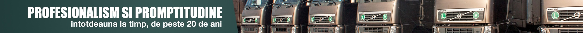 Firma transport international Pitesti